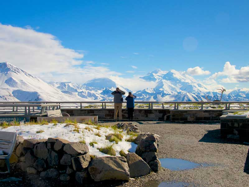 Alaska Cruise and Land Tour | Anchorage Denali Highlights | Denali Backcountry Tour