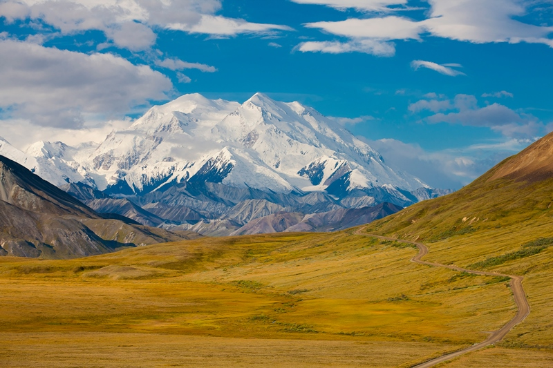 Alaska Land Tour with Arctic Circle Tour | Denali National Park