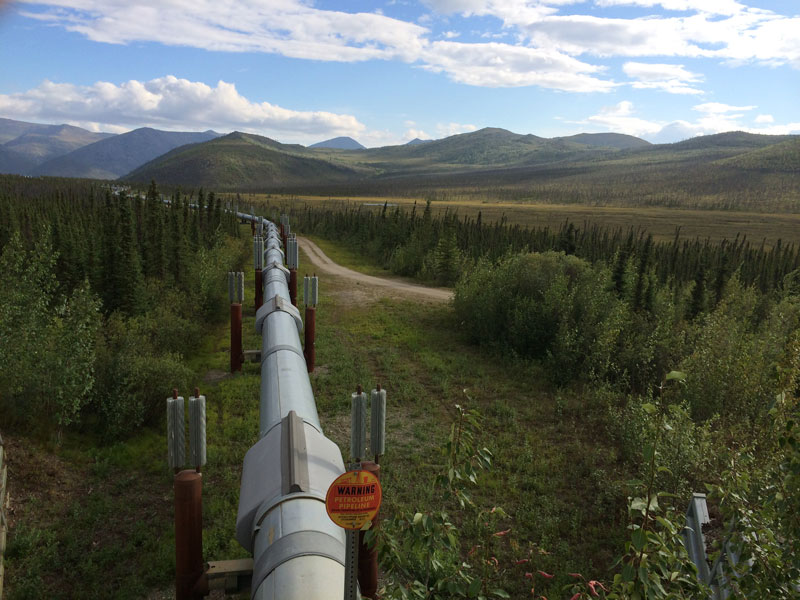 Alaska Land Tour with Arctic Circle Tour | Alaska Pipeline Dalton Highway