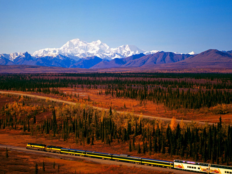 Alaska Stillpoint Lodge with Denali by Train | Denali with Alaska Railroad